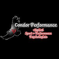 Condor Performance